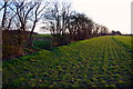 TL1390 : Bridleway near Morborne by Julian Dowse