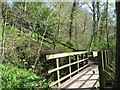 SJ8283 : Footbridge and Steps up Giant's Castle Rocks by Sue Adair