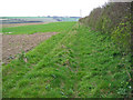 SE9163 : Bridleway To Towthorpe by Stephen Horncastle