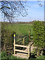 SJ5362 : The Sandstone Trail near Tarporley by John S Turner