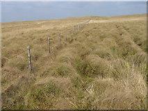 NS6330 : Fence on Graystone Hill by Chris Wimbush