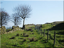 SE0021 : Bridleway near Sykes Farm by michael ely