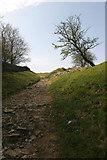 SO2807 : Looking up at Mynydd Garnclochdy by Guto Evans