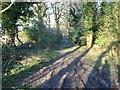 TG3425 : View ENE along Broad Fen Lane by Nick Smith