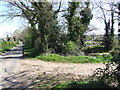 TL9794 : Pond beside Sandy Lane by Ian Robertson