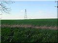 TL1456 : Pylon by Les Harvey