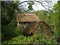ST4493 : Thatched farm buildings by Steve Sheppard