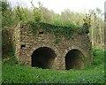 ST4592 : Limekilns in Cuhere Wood by Steve Sheppard