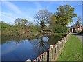 SJ4555 : Village Pond at Coddington by John S Turner