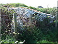 SM8631 : Capstone of Trewalter burial chamber by ceridwen