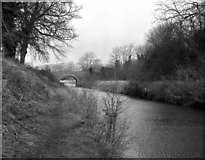 SU1061 : Alton Valley Bridge, Kennet and Avon Canal by Dr Neil Clifton