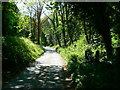 ST7762 : Trackbed of former Limpley Stoke to Camerton branch railway by Brian Robert Marshall