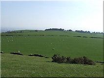 SS7198 : Top of Mynydd Drumau -looking towards Swansea by Paul Meredith