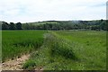 SP9732 : Greensand ridge way by Dennis simpson