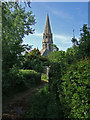 ST5731 : The Old Church at East Lydford by Mike Searle