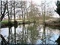 TM2281 : River Waveney at Needham Mill by Margaret Brook