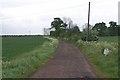 TL0443 : Farm Track by Dennis simpson