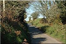 SW9554 : Country Lane near Carloggas by Tony Atkin