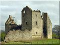 NS8384 : Torwood Castle ruin April 2007 by Nigel J C Turnbull