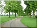 SP5631 : Tusmore Park by Snidge