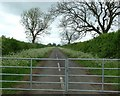 SP5629 : Road to Baynards Green by Snidge