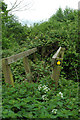 TL3247 : Unusable footbridge by Adrian Perkins