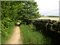 SK3097 : Footpath along edge of Wharncliffe Moor by Wendy North
