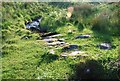 NR8198 : Clapper bridge by Patrick Mackie