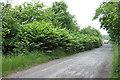 SJ9403 : Something Nasty in the Hedge, near Essington, Staffordshire by Roger  Kidd