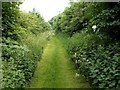 SE2910 : Footpath from Birthwaite Lodge to Birthwaite Hall by John Fielding