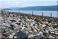 NR9793 : Shore of Loch Fyne by Patrick Mackie