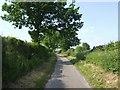 SJ9402 : Old Hampton Lane by John M