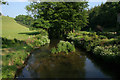 SX3270 : The River Lynher at Bicton Mill by Kate Jewell