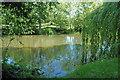 TL3166 : Conington duck pond by Adrian Perkins