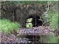 SU2309 : Bratley Arch, New Forest by Jim Champion