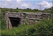 SX0160 : Railway bridge at Criggan by Derek Harper
