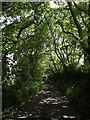 SW8759 : Lane from the ford by Derek Harper