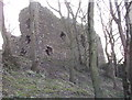 NK0948 : Ruins of Ravenscraig Castle by Jim Davidson