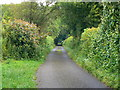 ST6160 : Featherbed Lane, Clutton by Brian Robert Marshall