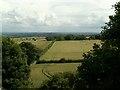 SE3211 : Wheatley Wood to Warren Lane by John Fielding