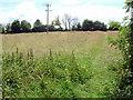 TL1170 : Meadow l by Les Harvey