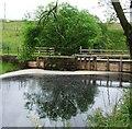 NS2472 : Head pool at Cornalees Bridge by Thomas Nugent