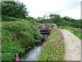 NS2372 : Bridge on Greenock Cut by Thomas Nugent
