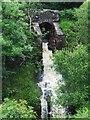 NS2373 : Waterfall on Greenock Cut by Thomas Nugent