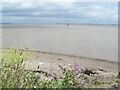 ST5691 : Severn Estuary by andy dolman