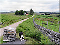 NC6338 : Where the Strathnaver walking trail crosses the road by RH Dengate