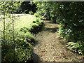 SX2162 : West Looe River - downstream by Jonathan Billinger