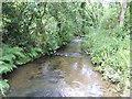 SX1758 : Trebant Water - downstream by Jonathan Billinger