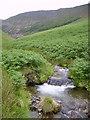 NY2220 : Waterfall, Rigg Beck by Michael Graham