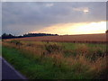 TL0771 : Looking across to Catworth lodge by Les Harvey
